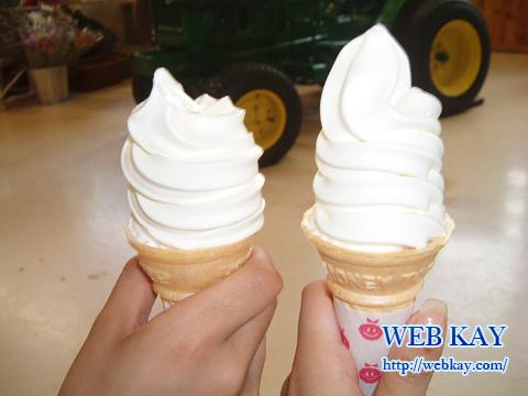 長野 八ヶ岳 牧場 ソフトアイスクリーム