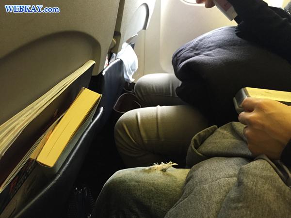 座席 広さ チェジュ航空 Jeju airlines
