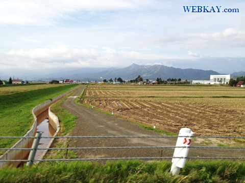 富良野 北海道 ドライブ 景色 風景