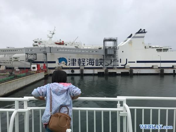 ブルードルフィン2 フェリー大函丸 だいかんまる 津軽海峡 tsugarukaikyo ferry daikanmaru ship standard 船旅