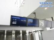 成田空港 搭乗口 JAL