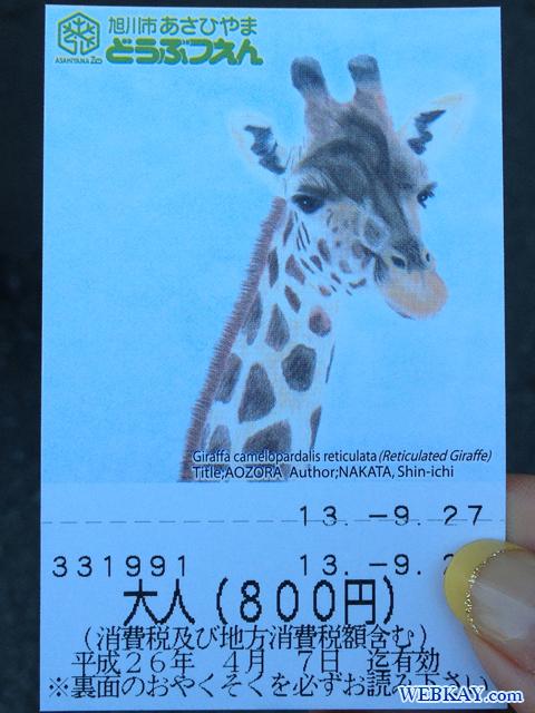 旭山動物園 観光スポット ぶらり旅 キリン チケット