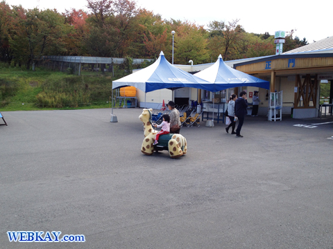 旭山動物園 観光スポット ぶらり旅