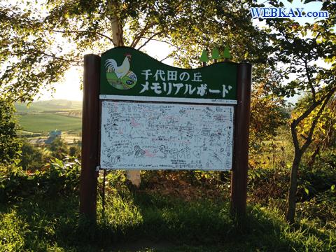 美瑛 千代田の丘見晴らし台 観光スポット ぶらり旅 ドライブ