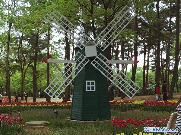 国営ひたち海浜公園 たまごの森 フラワーガーデン flower garden 茨城県