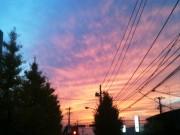 キレイな空 横浜 虹色