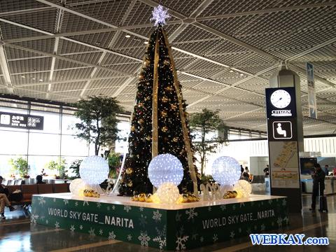 成田国際空港 Narita International Airport