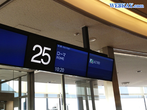 成田国際空港 Narita International Airport