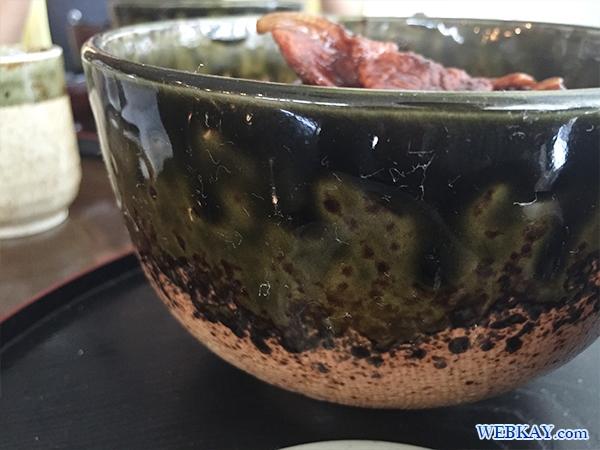 帯広(おびひろ)麺処「開拓そば」豚丼(ぶたどん)
