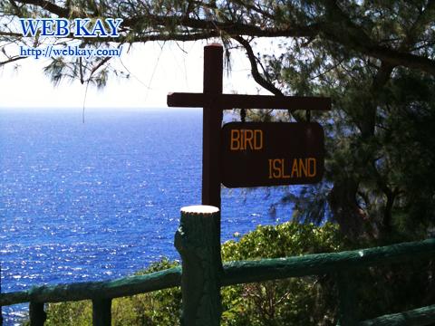 バードアイランド BIRD ISLAND 自然保護区