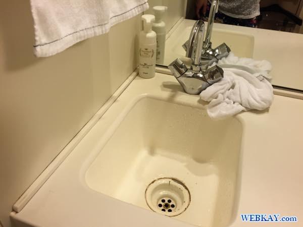 洗面台 冷蔵庫 ドーミーイン北見 dormy inn kitami ホテル 宿泊 北見 乾燥機 部屋写真 口コミ 利用した感想
