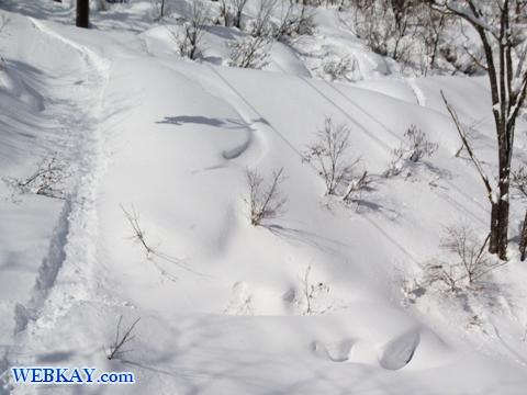 乗鞍スノーリゾート,乗鞍,のりくら,スキー場,スノーボード