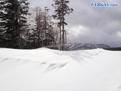 グランデコスノーリゾート スノーボード 滑走ログ 雪 ホットドッグ ワッフル