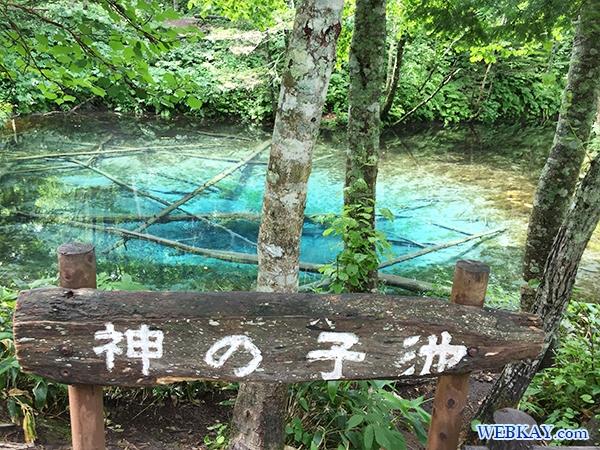 神の子池(かみのこいけ) 北海道 神秘的な池 パワースポット