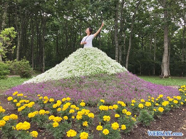 道の駅 摩周温泉 弟子屈 施設 花壇のスカート