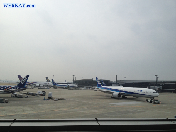 アシアナ航空 ASIANA AIRLINES  成田国際空港