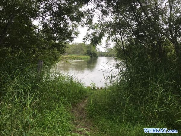 カヌーショップヒライワ 釧路湿原 カヌー hokkaido Kushiro Marsh canoe 北海道