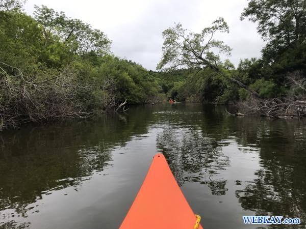 カヌーツアー 釧路湿原 カヌー Kushiro Marsh canoe