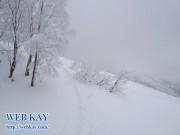 田沢湖スキー場 たざわ湖スキー場 雪景色 スノーボード パウダー