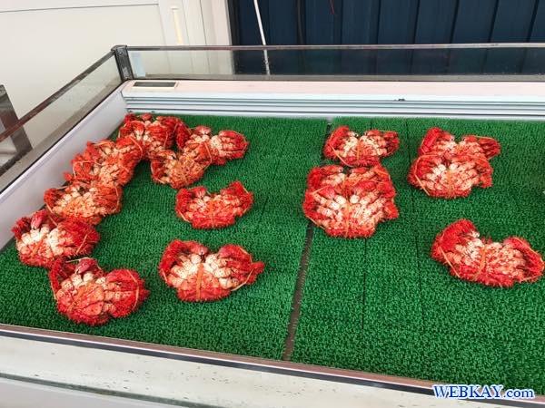 nemuro hokkaido daihachi Hanasaki crab Paralithodes brevipes Hanasaki-kani