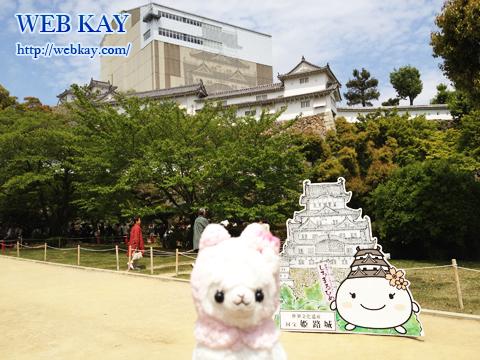 姫路城 白鷺城 世界遺産 兵庫県姫路市 日本100名城 姫路おでんとアルパカ