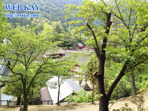 厳島神社 世界文化遺産 宮島 大鳥居 千畳閣 せんじょうかく 景色