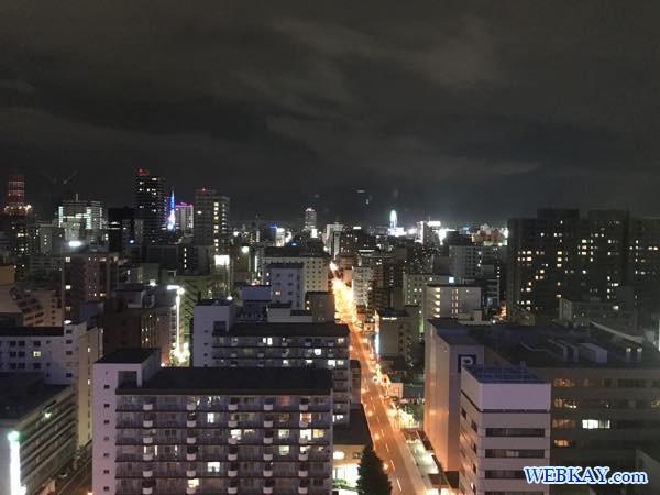 眺め 景色 札幌プリンスホテル サッポロプリンスホテル 北海道 sapporo prince hotel ホテル 宿泊 口コミ 利用レビュー