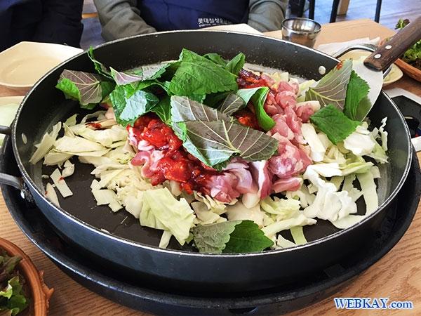 春川 チュンチョン タッカルビ まずいとタダ 食べログ 江原道 韓国 南怡島 ナミソム