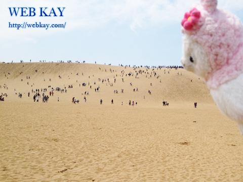 鳥取砂丘 天然記念物 山陰海岸国立公園 日本三大砂丘 アルパカ
