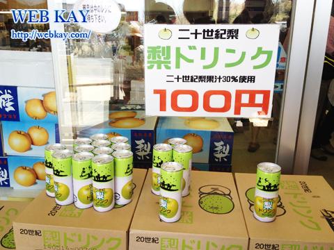 鳥取砂丘 天然記念物 梨ドリンク 100円