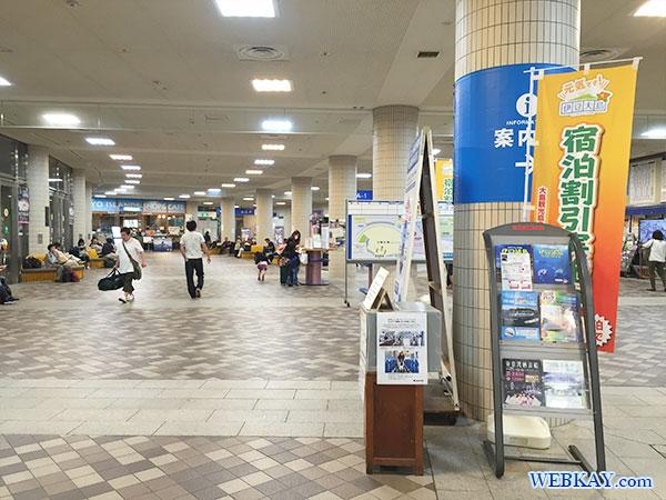 竹芝客船ターミナル takeshiba terminal 東海汽船 利用レビュー tokaikisen ship hamamatsu-cho