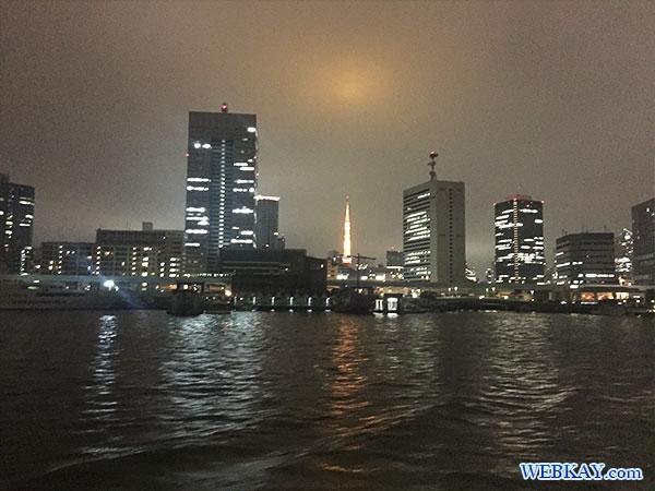 東京タワー tokyo tower 東海汽船 さるびあ丸 東京 夜景 船 night view tokyo tokaikisen sarubiamaru ship