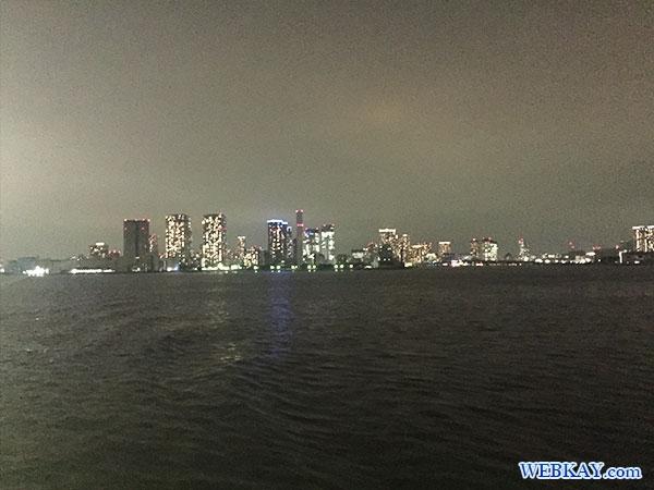 東海汽船 さるびあ丸 東京 夜景 船 night view tokyo tokaikisen sarubiamaru ship