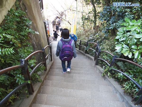 稚児ヶ淵 ちごがふち 岩屋 いわや 神奈川県景勝50選 江の島