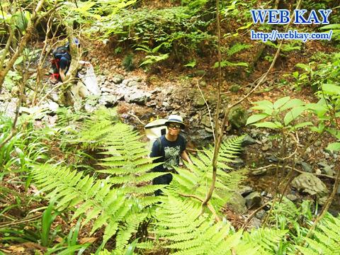 高尾山清掃登山 ハイキング エコ活動 ゴミ拾い