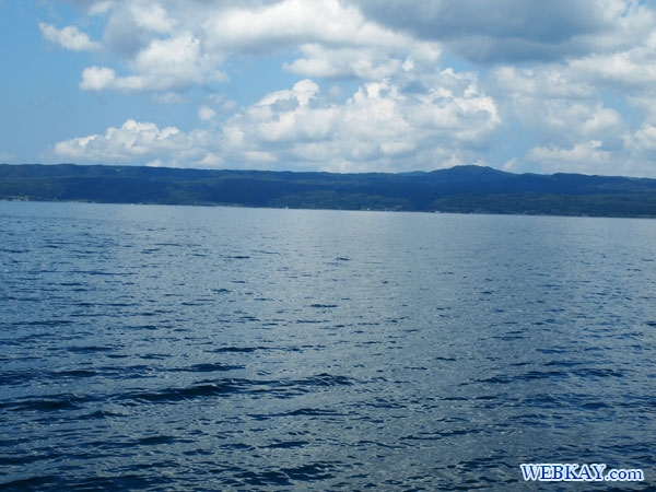 能登島 イルカウォッチング 柳(やなぎ) いるか 海豚 dolphin watching Noto Japan