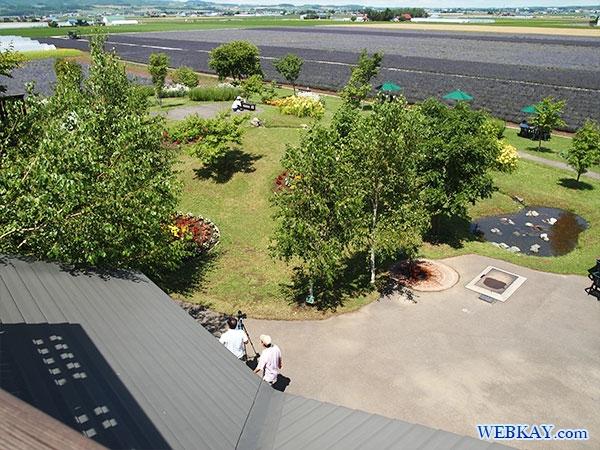 ラワーレの舎 ファーム富田 ラベンダーイースト lavender east farm tomita ファームとみた lavender field