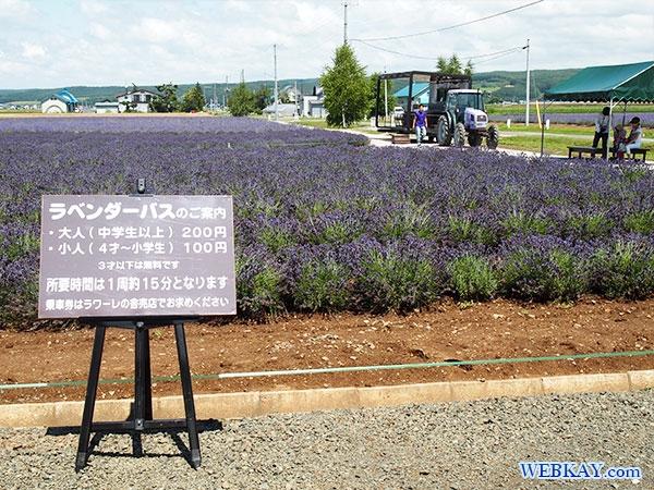 ラベンダーバス ファーム富田 ラベンダーイースト lavender east farm tomita ファームとみた lavender field