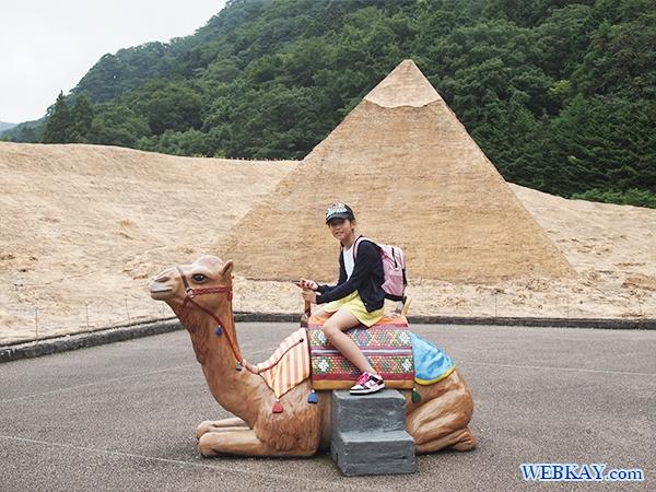 エジプトゾーン ラクダ