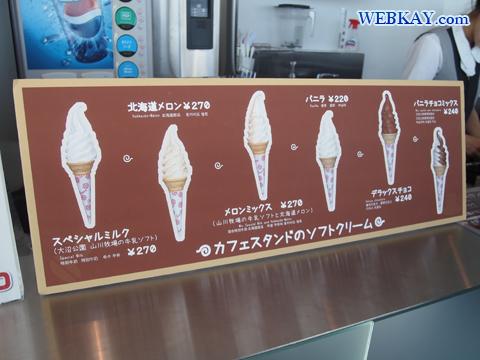 北海道メロン ソフトクリーム 五稜郭タワー 函館観光 北海道