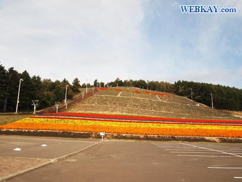 中富良野町営ラベンダー園 富良野 北海道 ドライブ 景色 風景