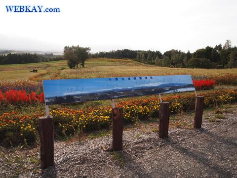 深山峠展望台 トリック美術館 富良野 北海道