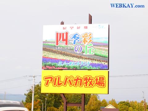 四季彩の丘 美瑛 観光 お花畑 ぐるめ スナック 感想 Hill Shikisai