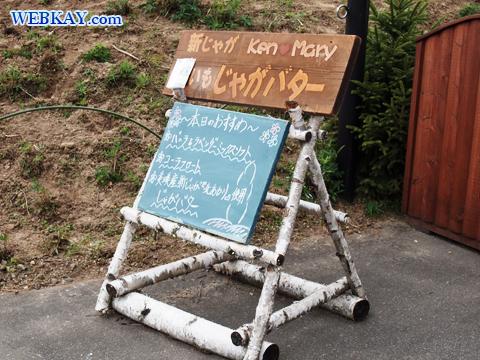 美瑛 びえい 観光 スポット 有名な木 ドライブ ケンとメリーの木