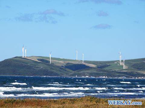 発電用風車群 宗谷丘陵の周氷河地形 北海道遺産 ドライブ 観光スポット