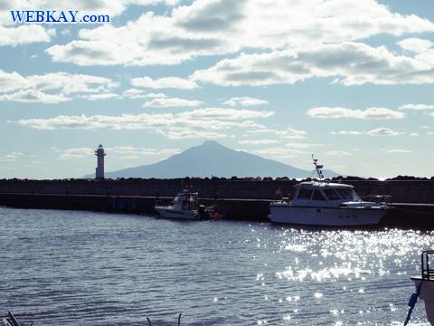 ノシャップ岬 野寒布岬 利尻富士 イルカ像 ドライブ 観光スポット ぶらり旅